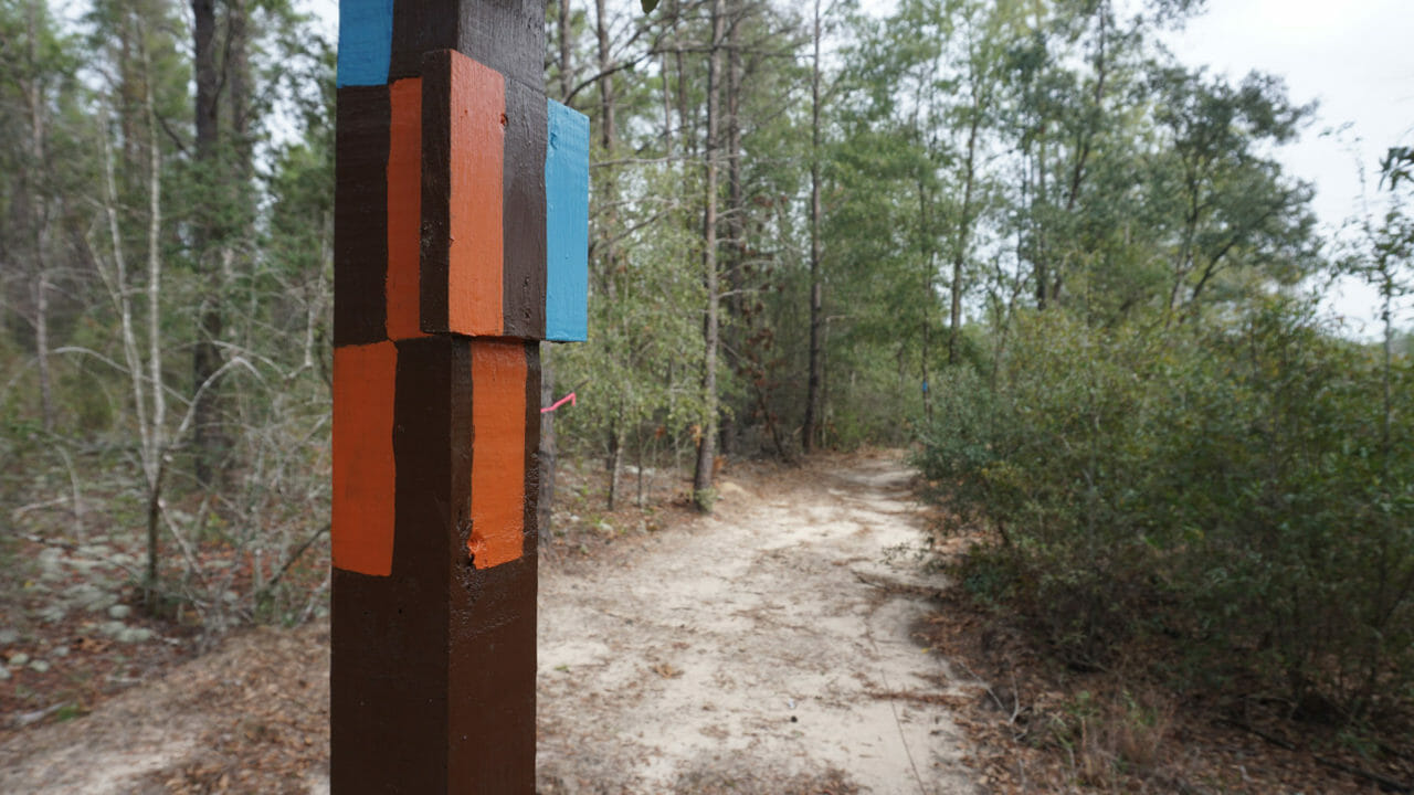 Florida Trail junction Blackwater