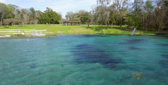 Blue Springs Recreation Area