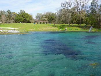 Jackson Blue Springs