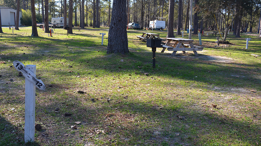 Campsite at Vortex Spring