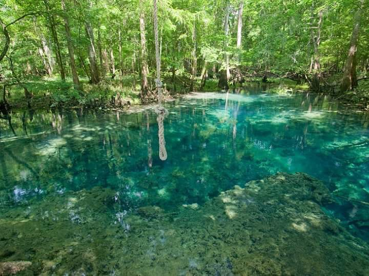 Baltzell Springs (Matthew Bull)