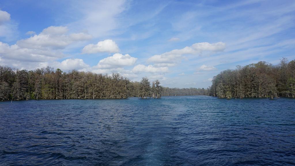 Merritt's Mill Pond