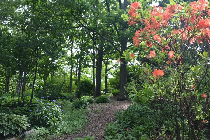 Enger Tower gardens