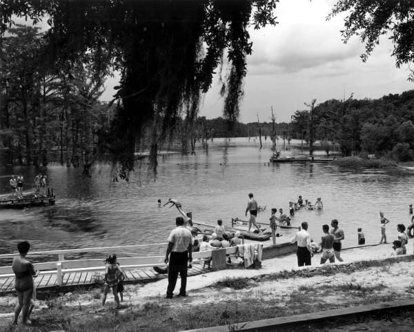 Swimmers at Jackson Blue