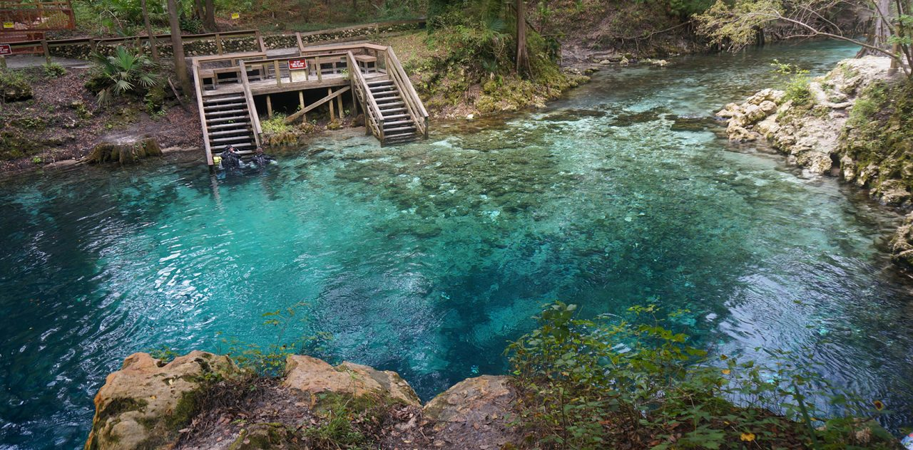 Springs Near Tallahassee Florida Hikes