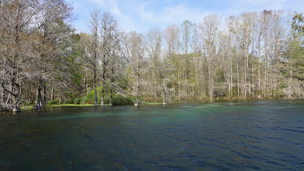 Merritts Mill Pond