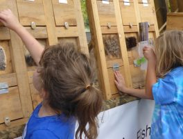 Explore the Outdoors Festival
