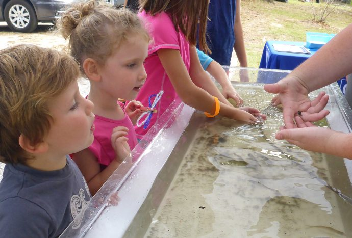 Choctawhatchee Basin Alliance touch tank  (Lori Ceier/waltonoutdoors.com)