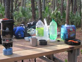Bear bagging a must in Florida's National Forests