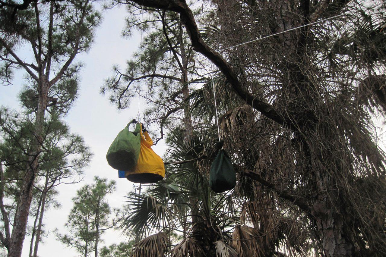 Bear bags Kitching Creek