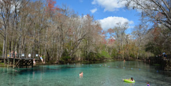 Gilchrist Blue Springs State Park