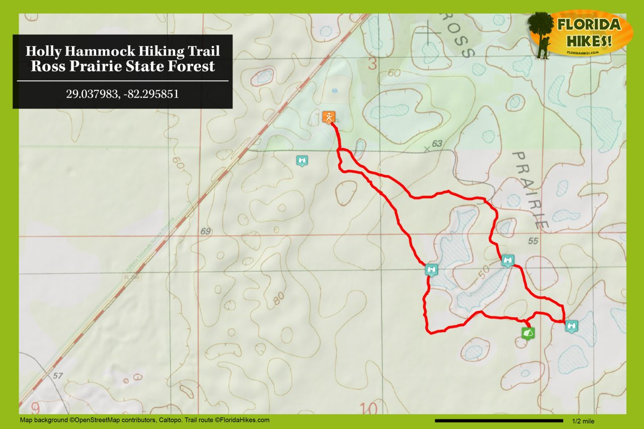 Holly Hammock trail map