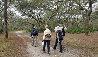 Hikers at Serenova (courtesy Save Serenova)