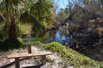 Robin Trail bench Spring Hammock Preserve