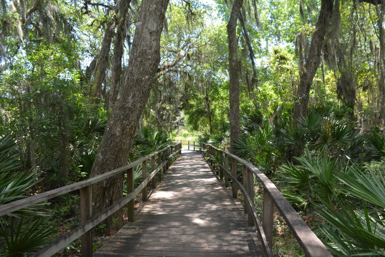 Boardwalk leading to Spanish Pond