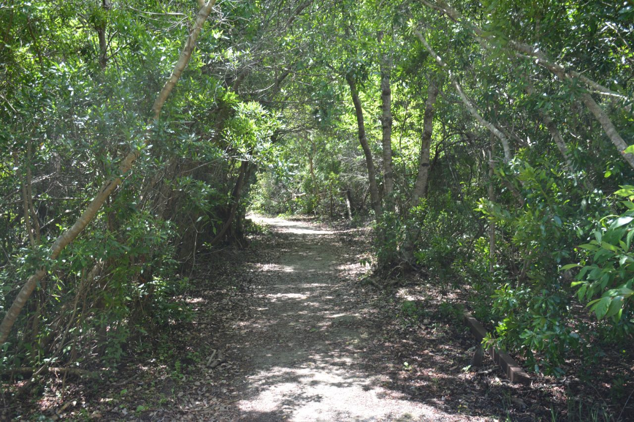 Spanish Pond Trail