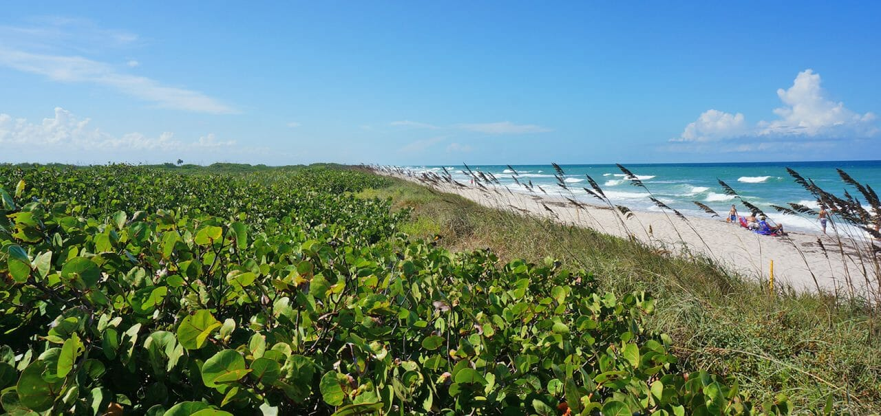 Playalinda Beach, Canaveral National Seashore