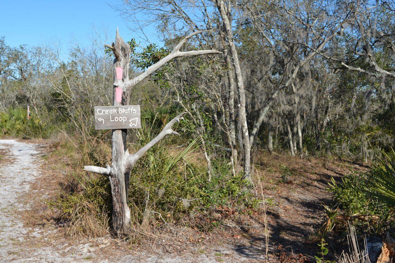 Creek Bluffs Loop junction, Tiger Creek Preserve