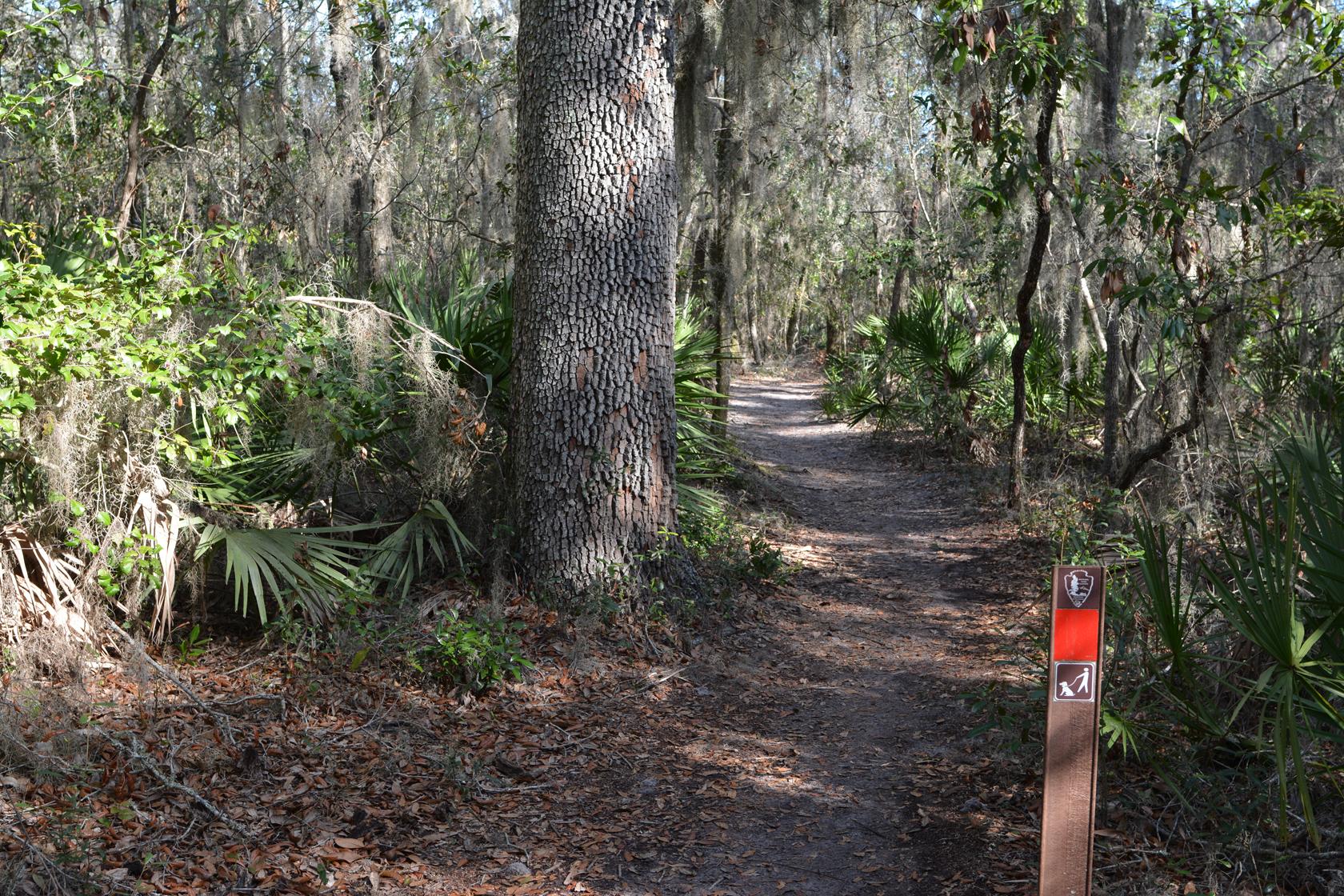 Spanish Pond Trail