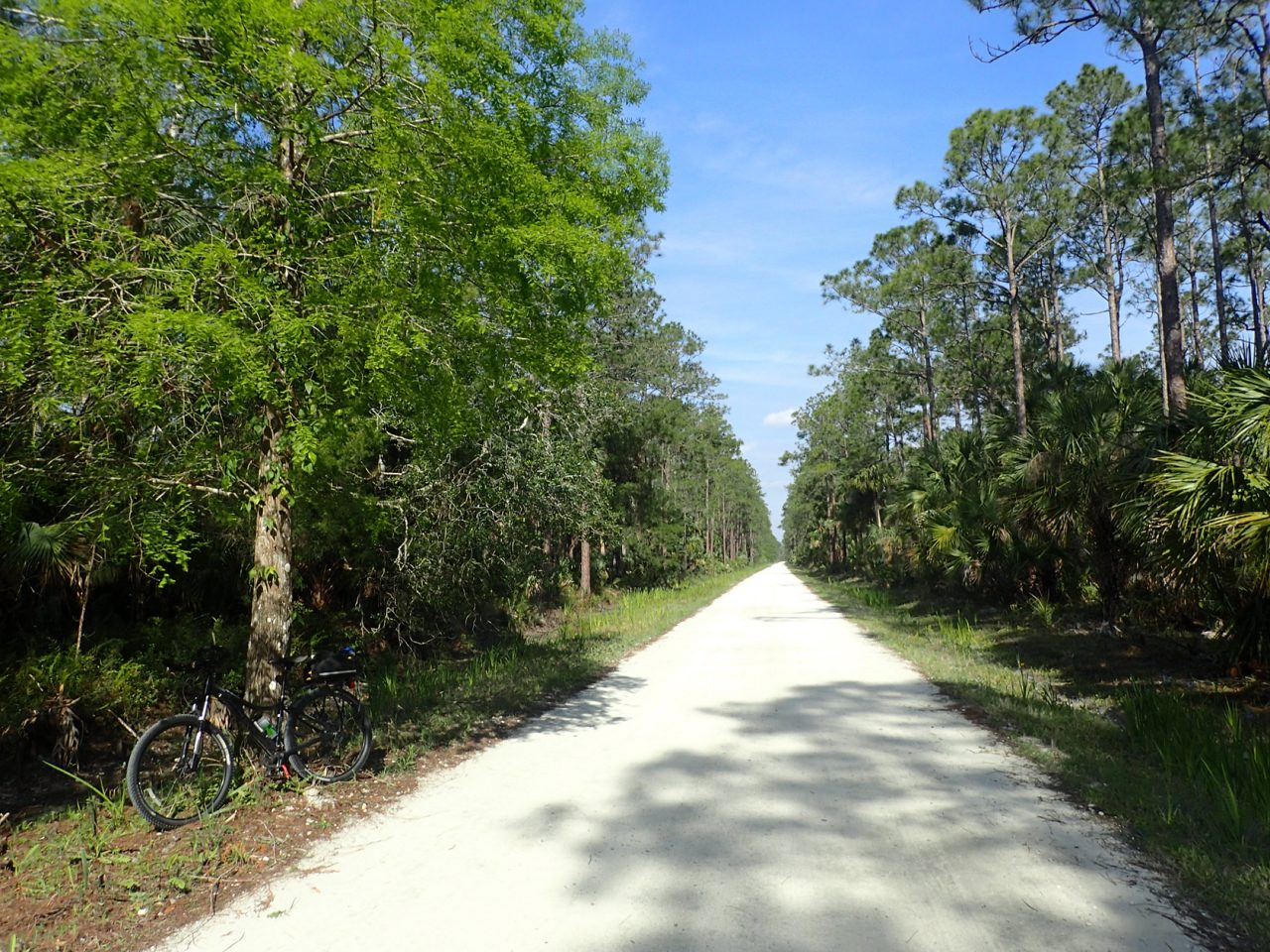 Tosohatchee Bike Loop