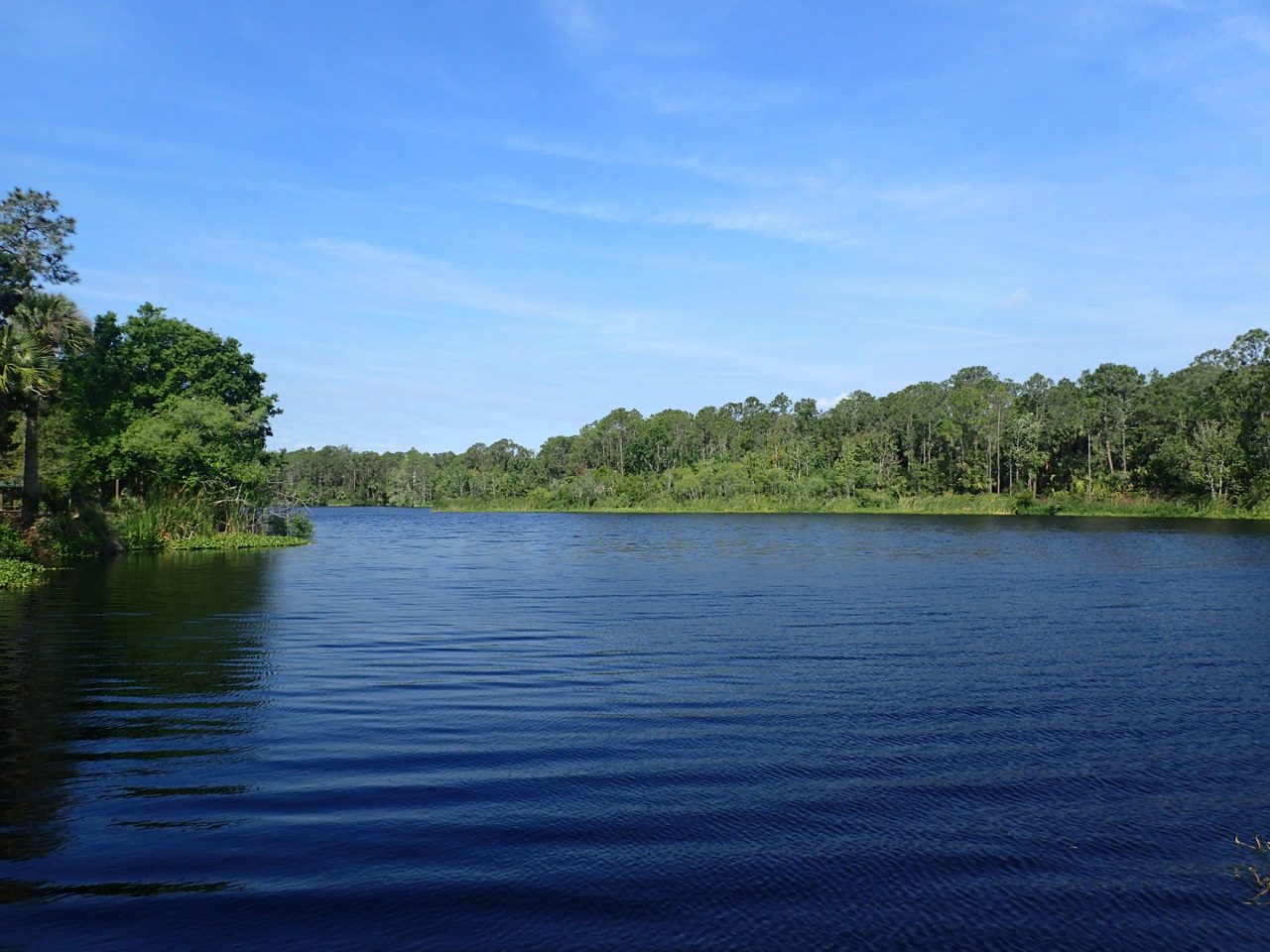 Charlie's Lake in Tosohatchee