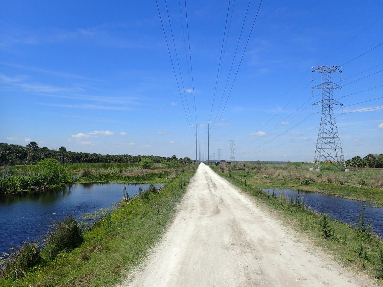 Powerline Road Tosohatchee