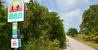 Grassy Key Trail