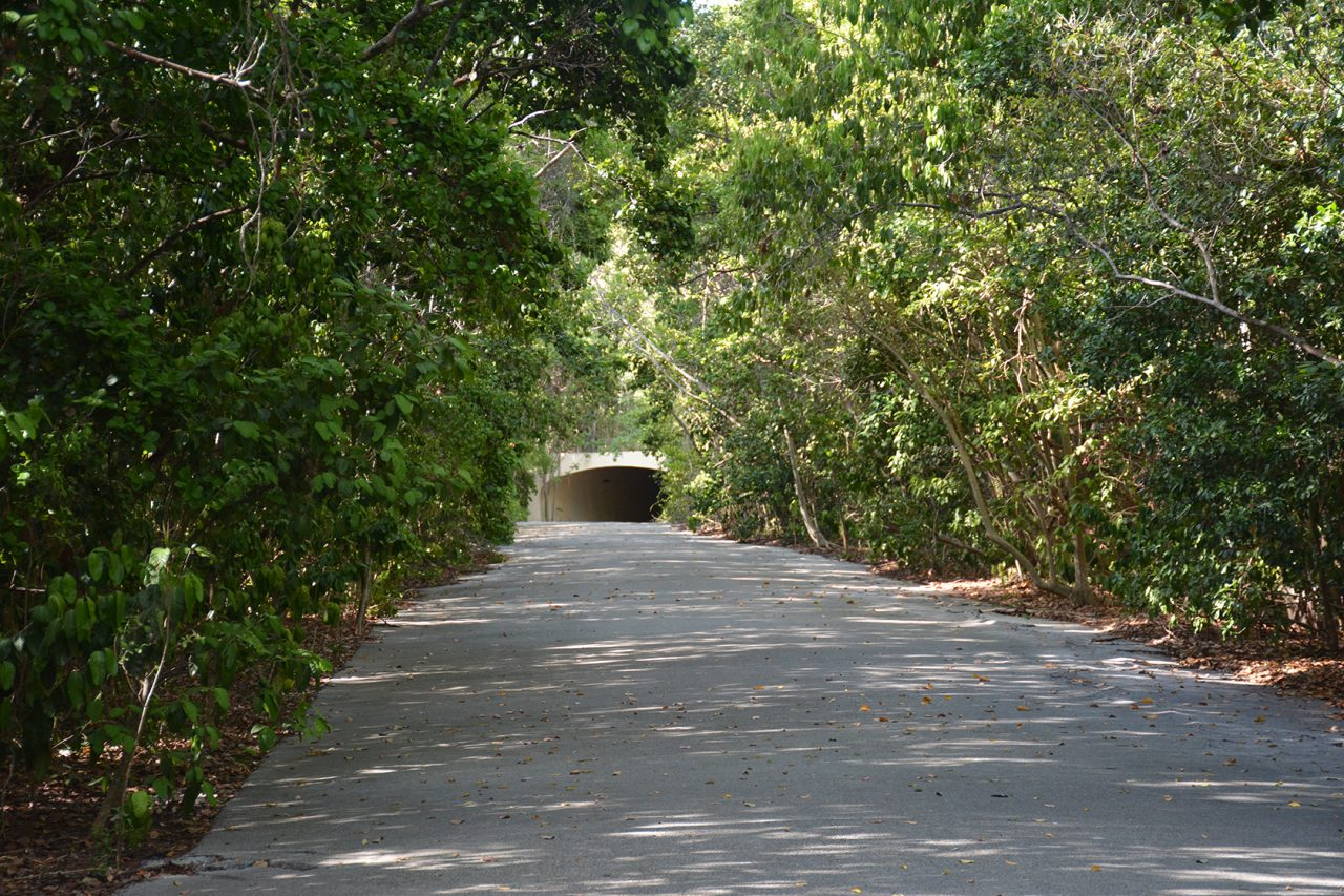 Port Bougainville Trail, Key Largo Hammock