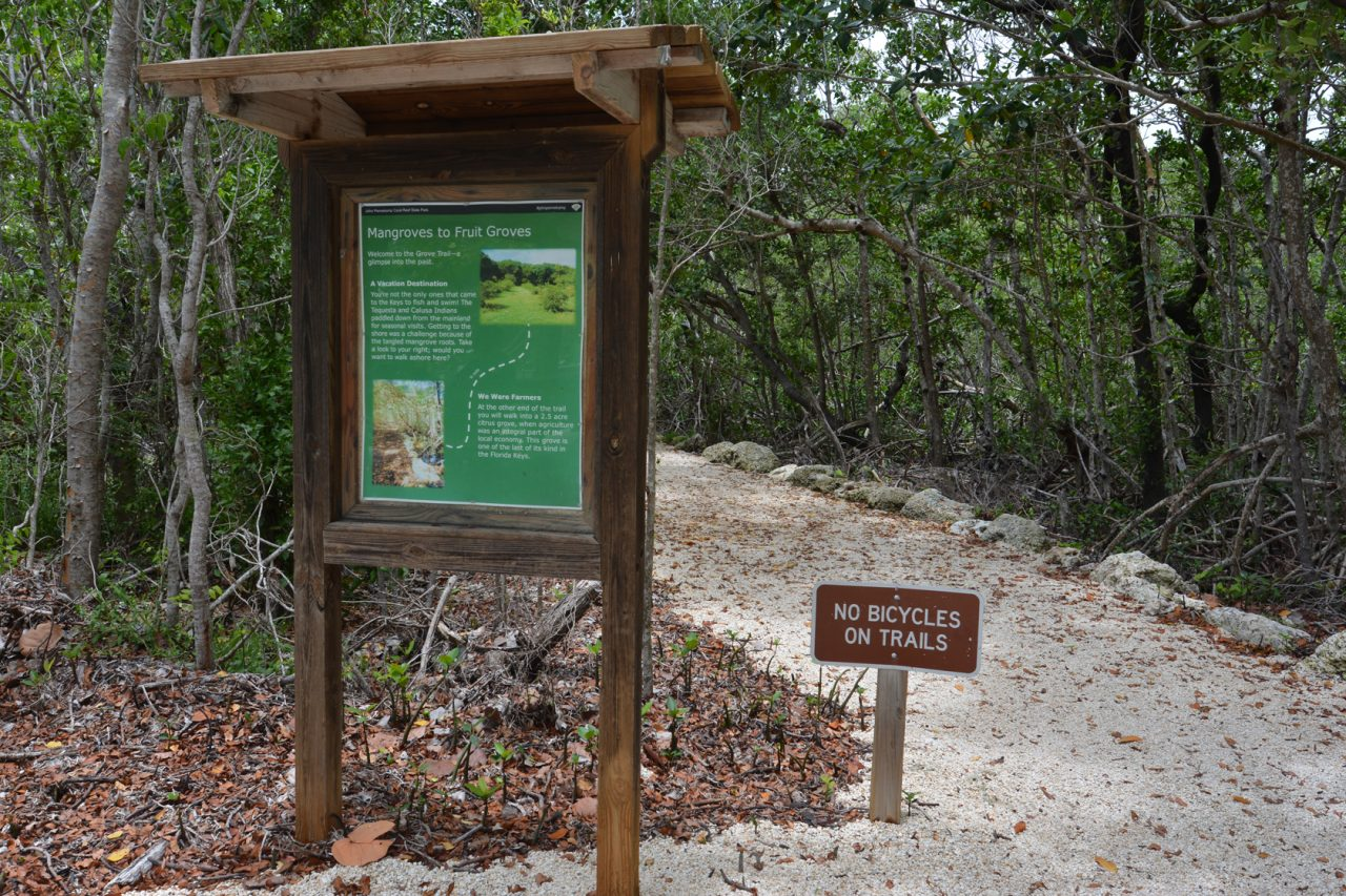 Grove Trail at John Pennekamp Coral Reef State Park