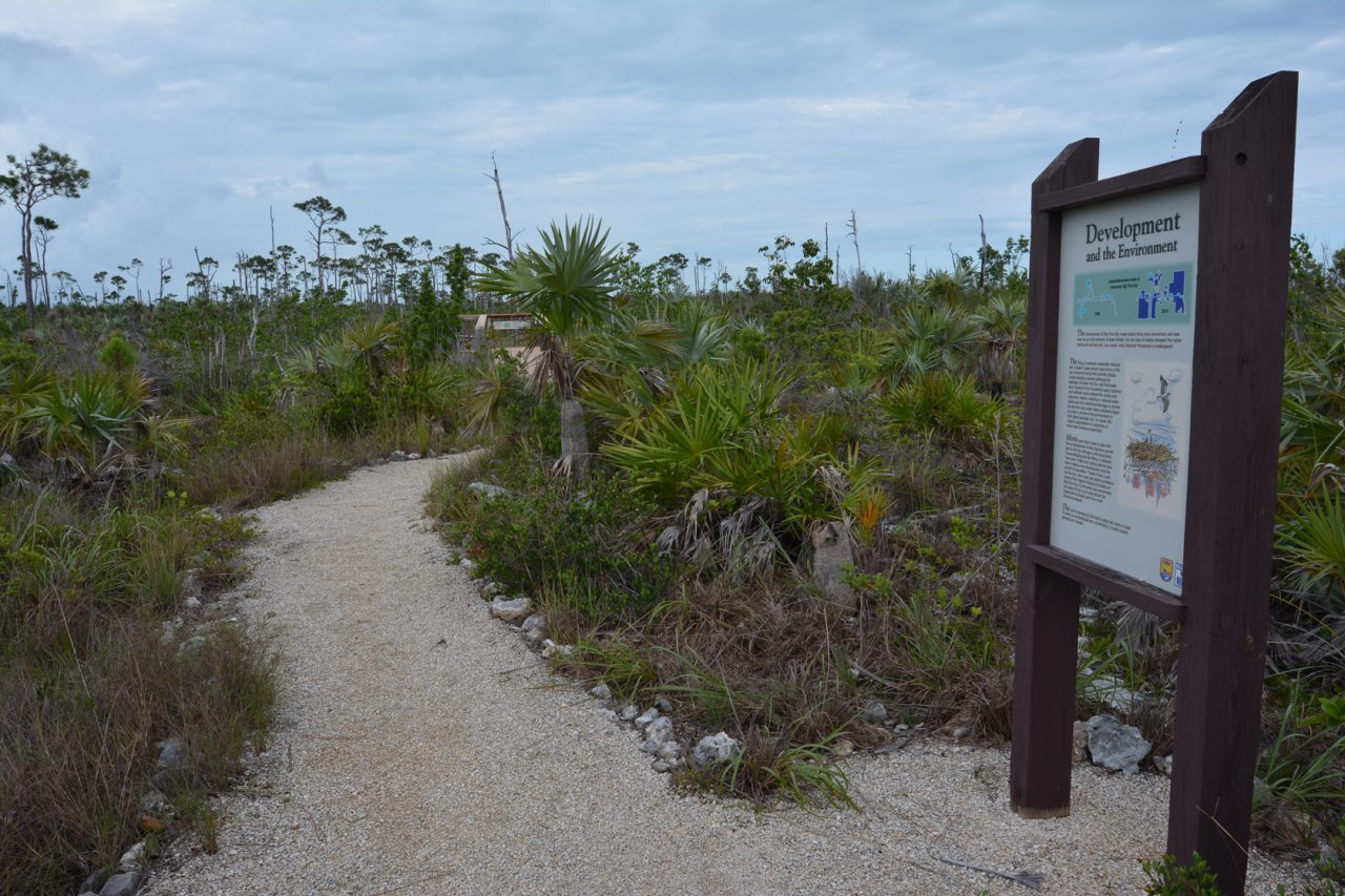 Mannillo Trail, National Key Deer Refuge