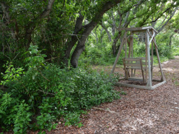 Plantation Hammocks Preserve