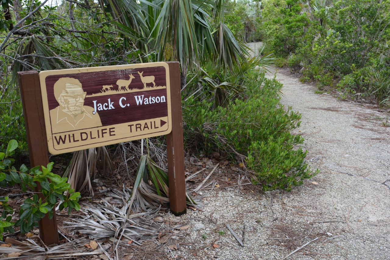 Watson Trail, National Key Deer Refuge