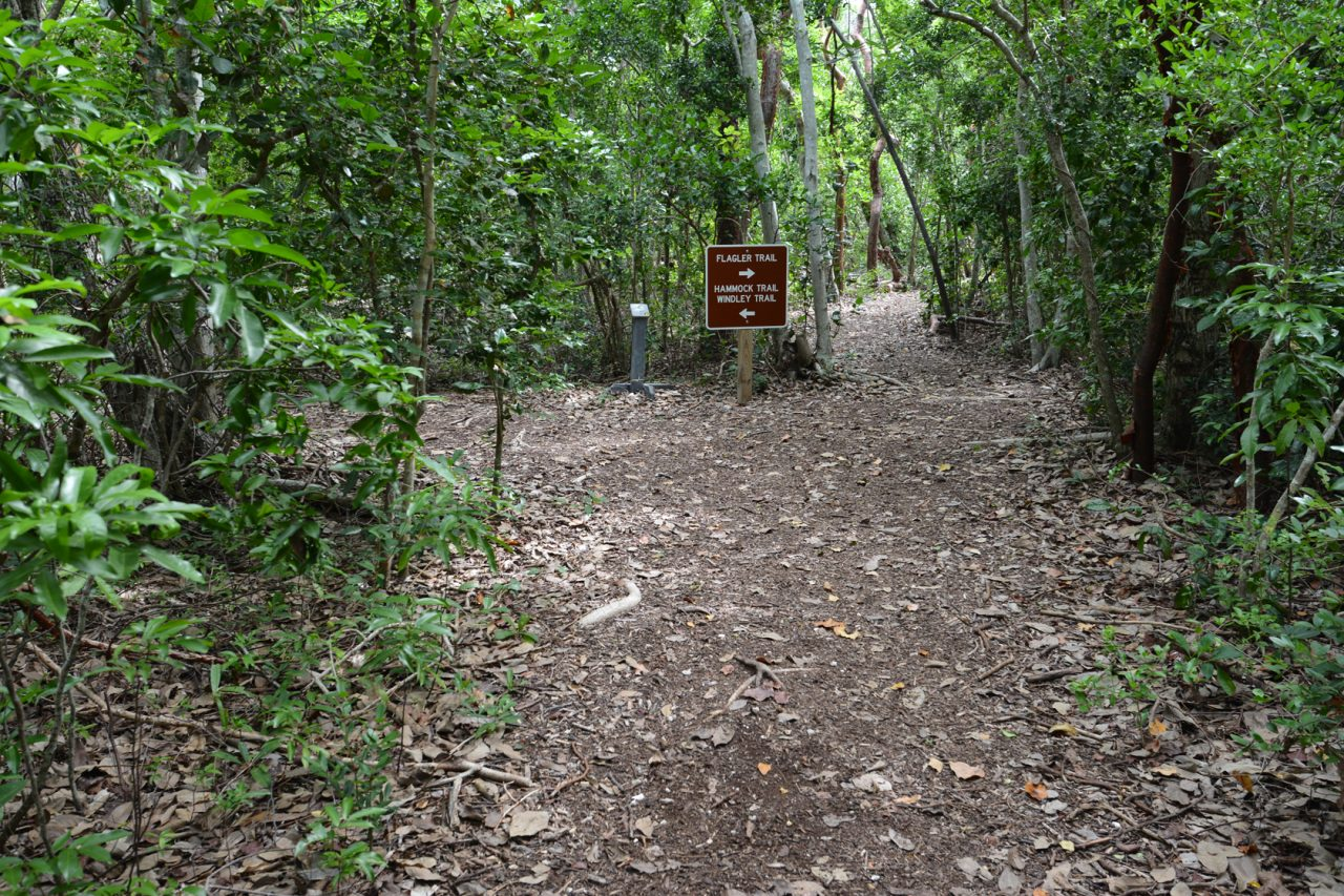 Flagler Trail at Windley Key