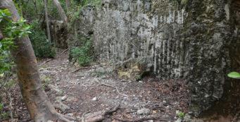 Flagler Quarry