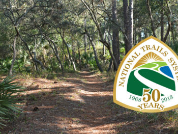 Florida Trail at Clearwater Lake