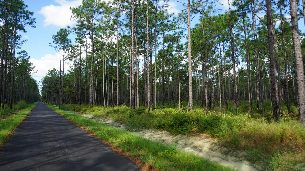 Good Neighbor Trail