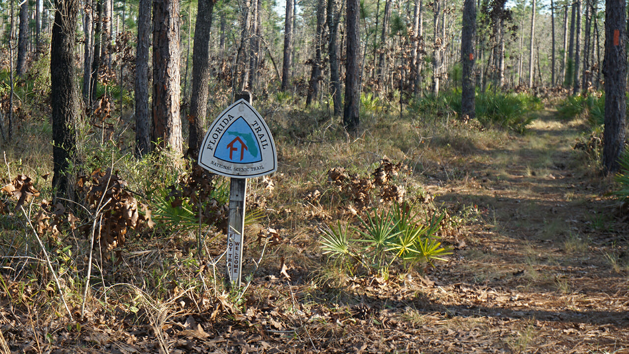 FNST sign Apalachicola National Forest