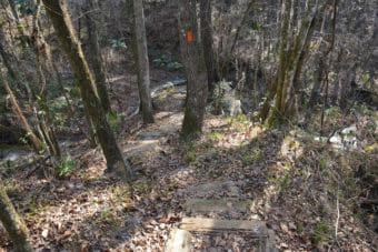Florida Trail North Florida
