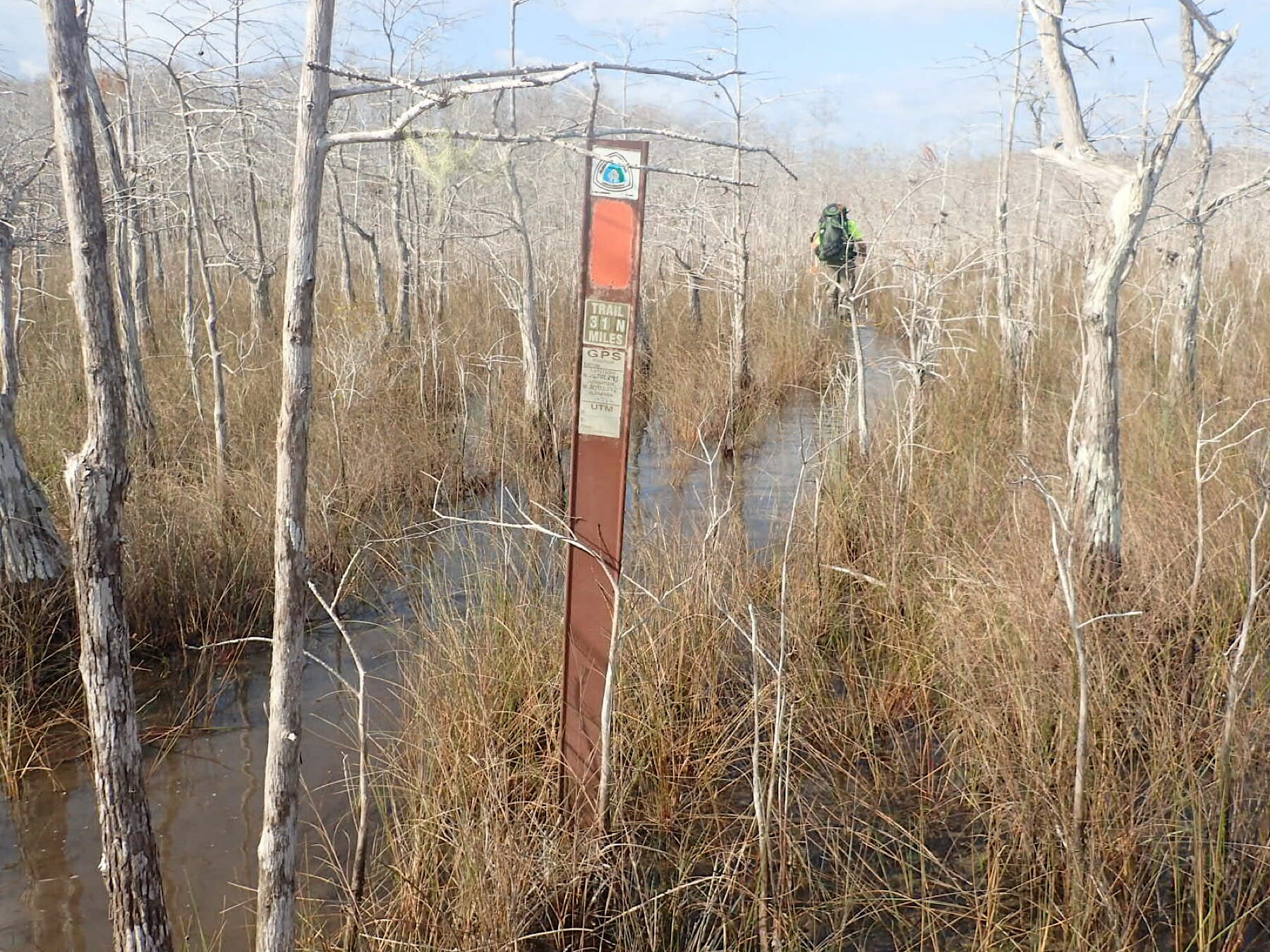 Crossing Big Cypress