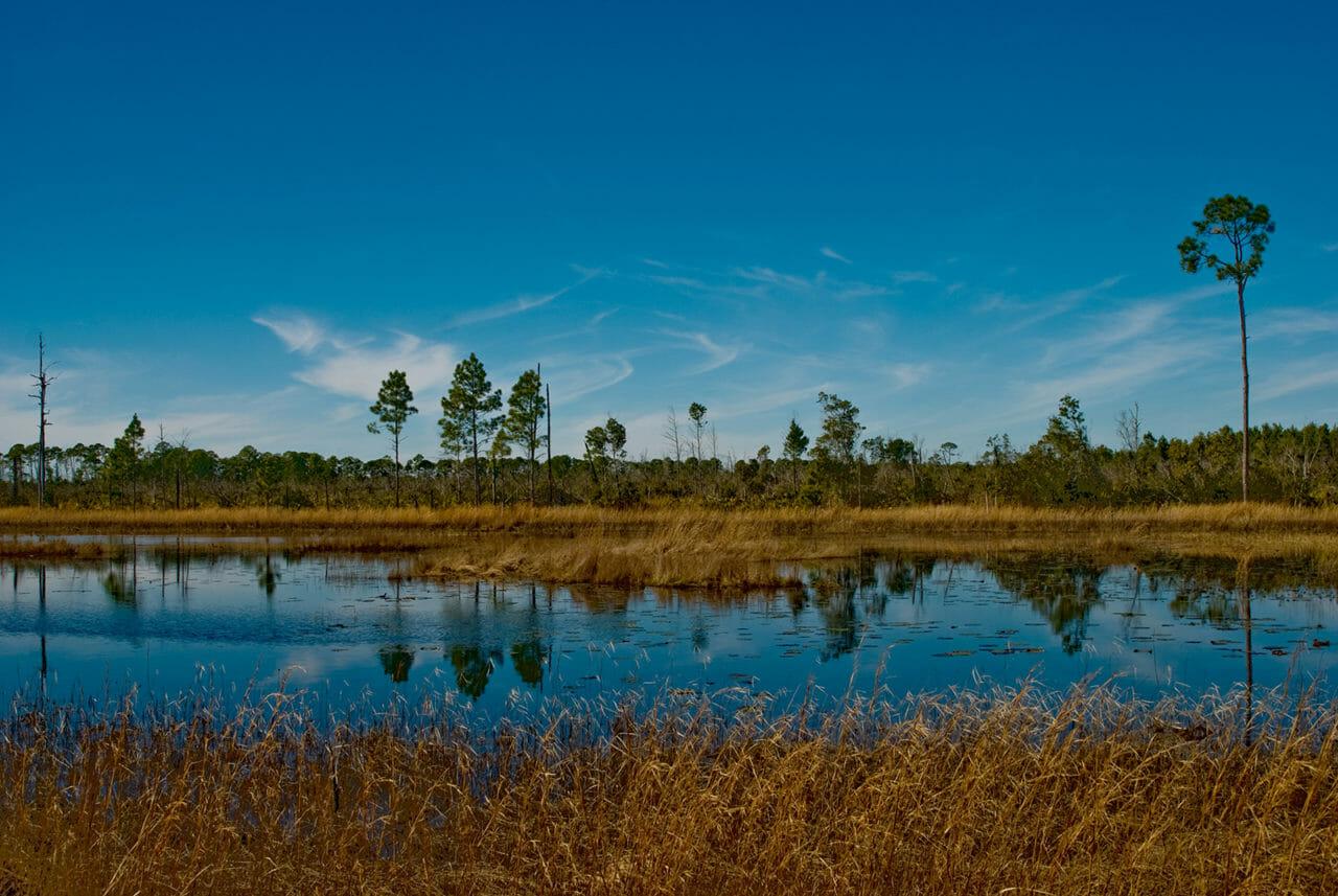 Juniper Prairie Wilderness