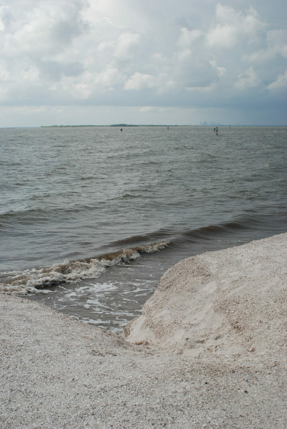 With its natural waterfront on Tampa Bay, Apollo Beach Nature Preserve is a perfect place for birders, a place to launch a kayak and scan the skies for osprey.