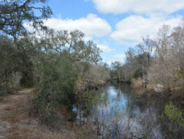 Florida Trail, Croom River Trail