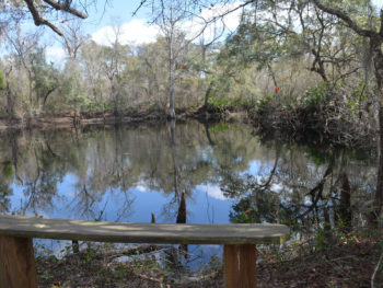 Croom River Trail