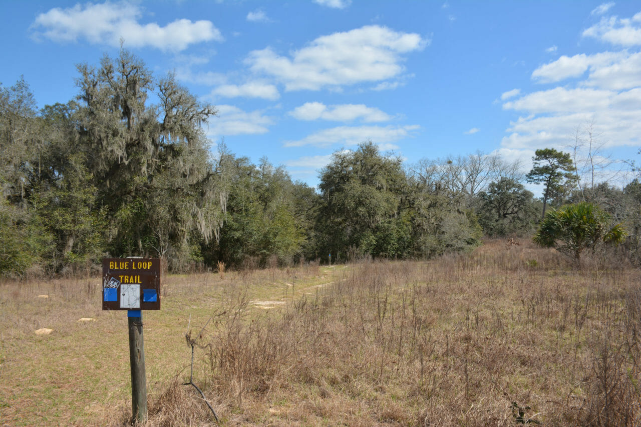 Blue Loop Trail sign in Croom