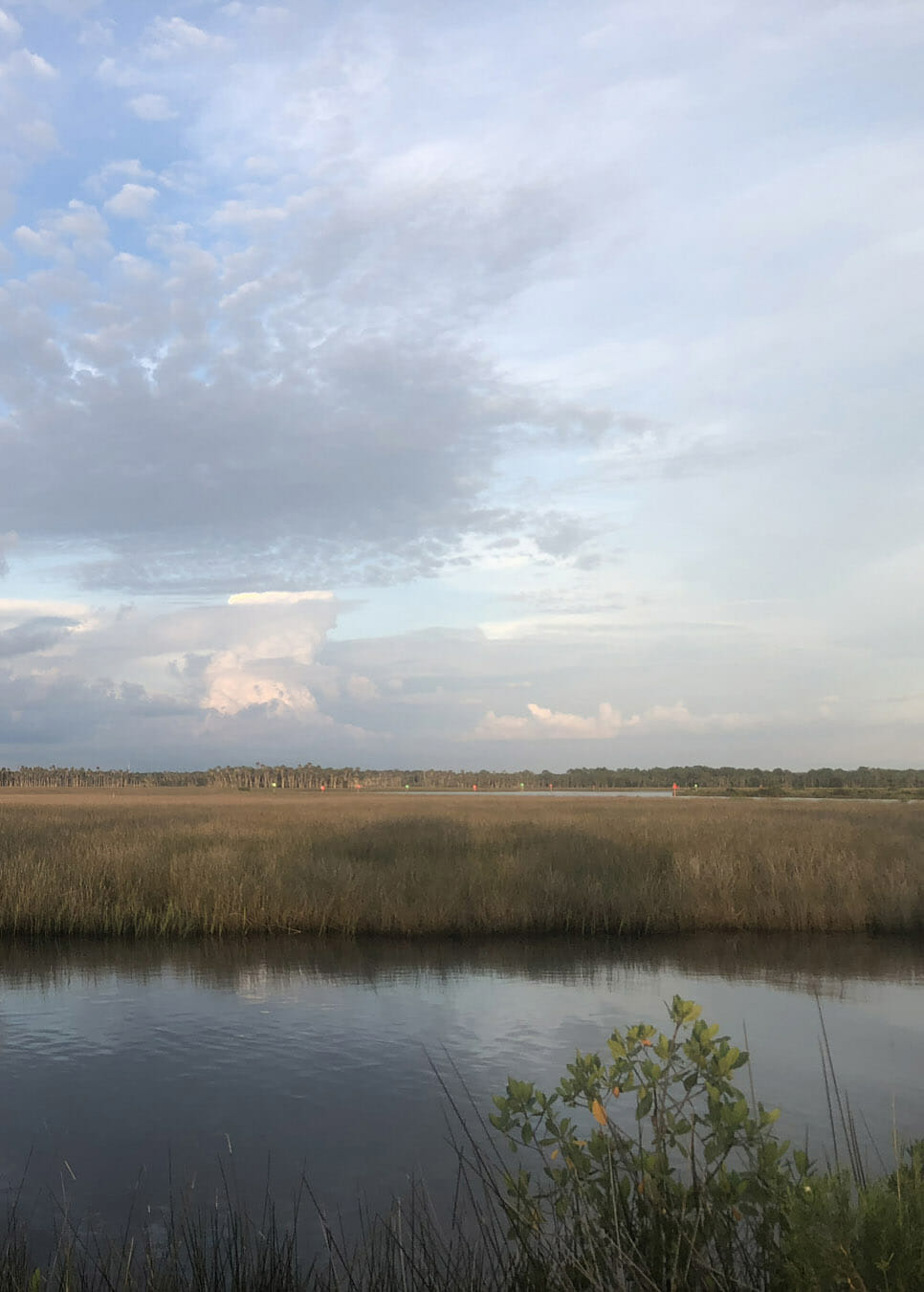 Where the highway ends, Bayport Park begins. Perched on the edge of the estuary where the Weeki Wachee River meets the Gulf of Mexico, it offers spectacular sunset views along with its water access.