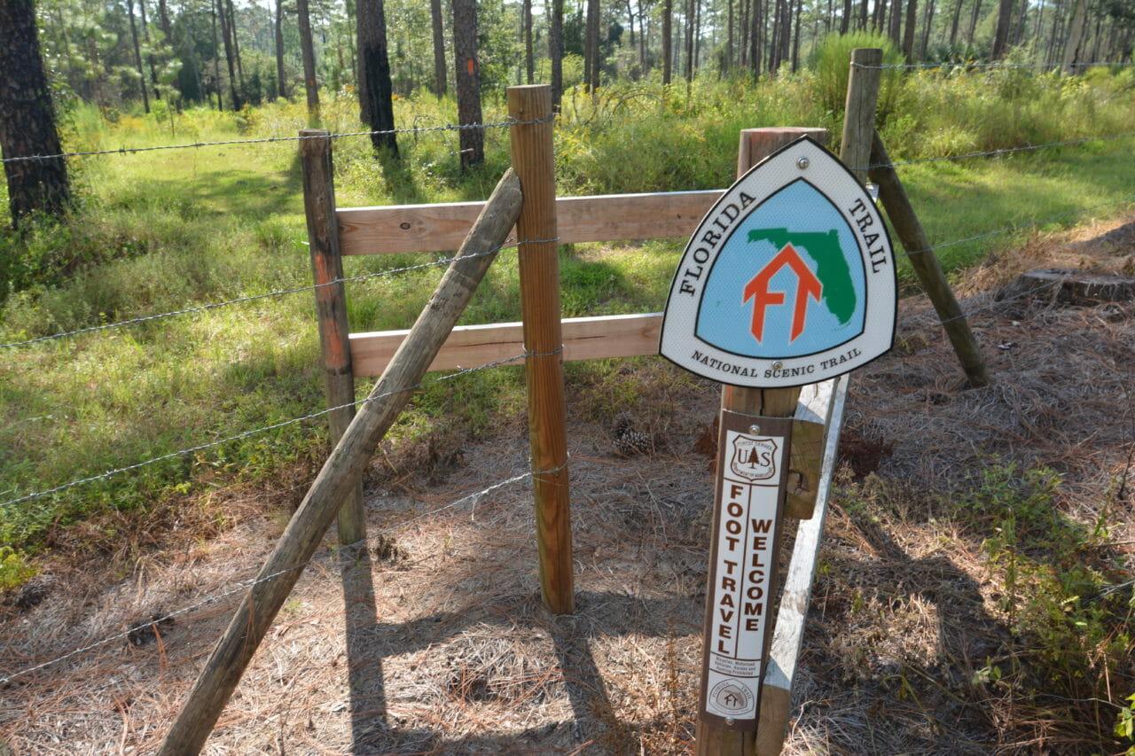 Florida Trail Chinsegut