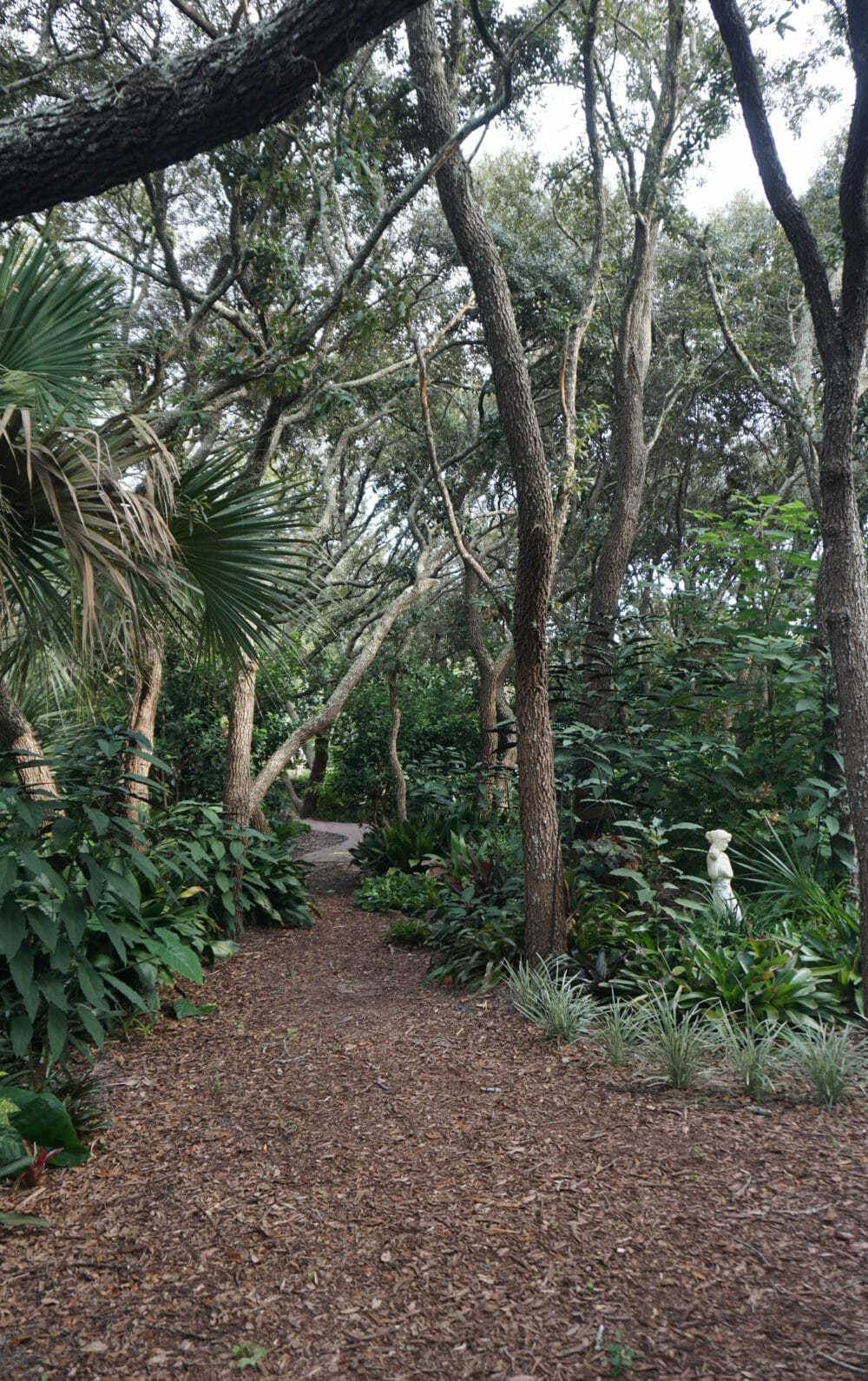 An oasis of serenity in Spring Hill, several acres of compact garden rooms make up the Nature Coast Botanical Gardens. Each delights the senses with an ever-changing array of blooms and colors.