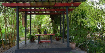 Oriental Tea Garden at Nature Coast Botanical Gardens