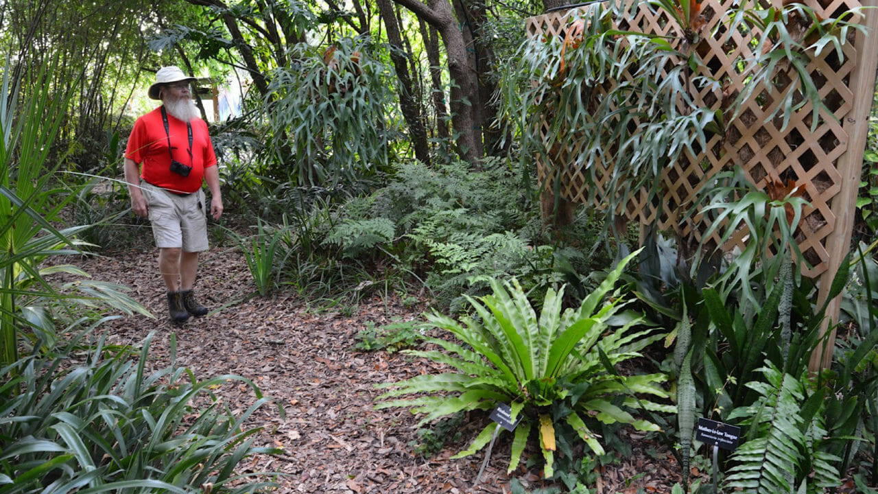 Nature Coast Botanical Gardens