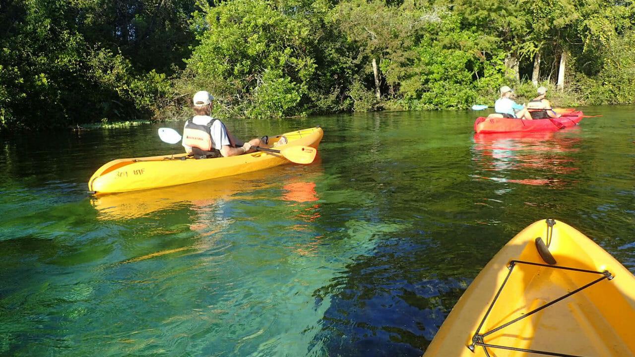 Paddling the Weeki Wachee River